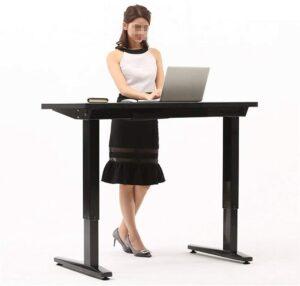 JenLn Electric Height Adjustable Standing Desk