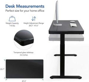 FLEXISPOT EG8 Standing Desk